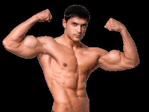 Suplemento para la construcción de músculos